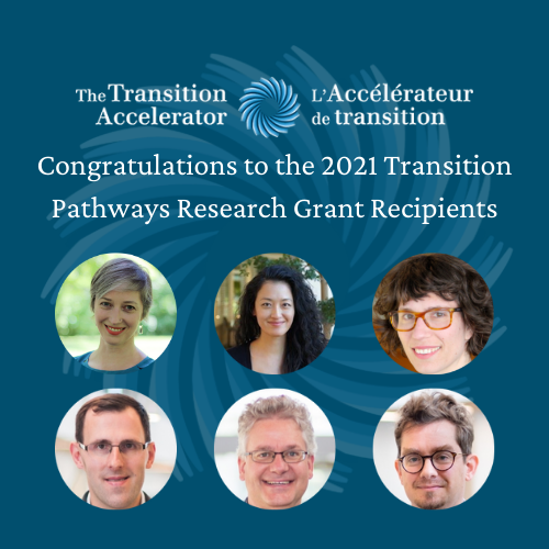 Announcing the Recipients of the Transition Pathways research grants
